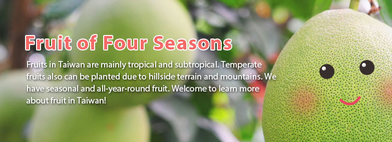 Seasonal Fruits